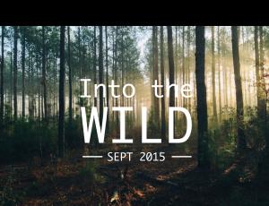 Into_the_WILD_2015_02